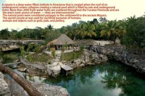Tortuga Cenote/Photo Kendra Yost