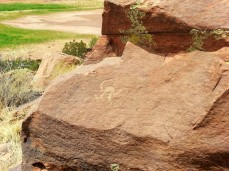 A petroglyph at Lyman Lake State Park in Arizona.