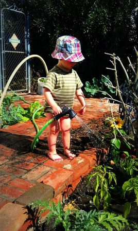 My three-year-old gardening in Phoenix. (Photo/Kendra Yost)