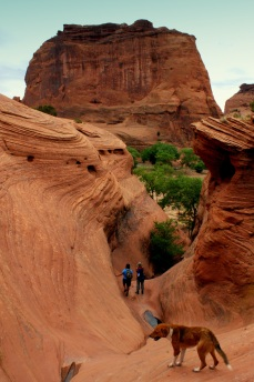 Hikers in Canyon de Chelly The White House Ruin Lookout in Canyon de Chelly in Northeastern Arizona. (Photo/Kendra Yost)