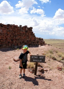 Agate House trail in Petrifired National Monument in Arizona. Photo/Kendra Yost