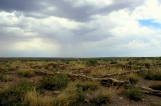 Ruins at Puerco Pueblo in the Petrified Forest National Monument. Photo/Kendra Yost
